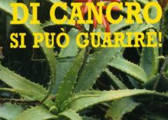 Di cancro si può guarire